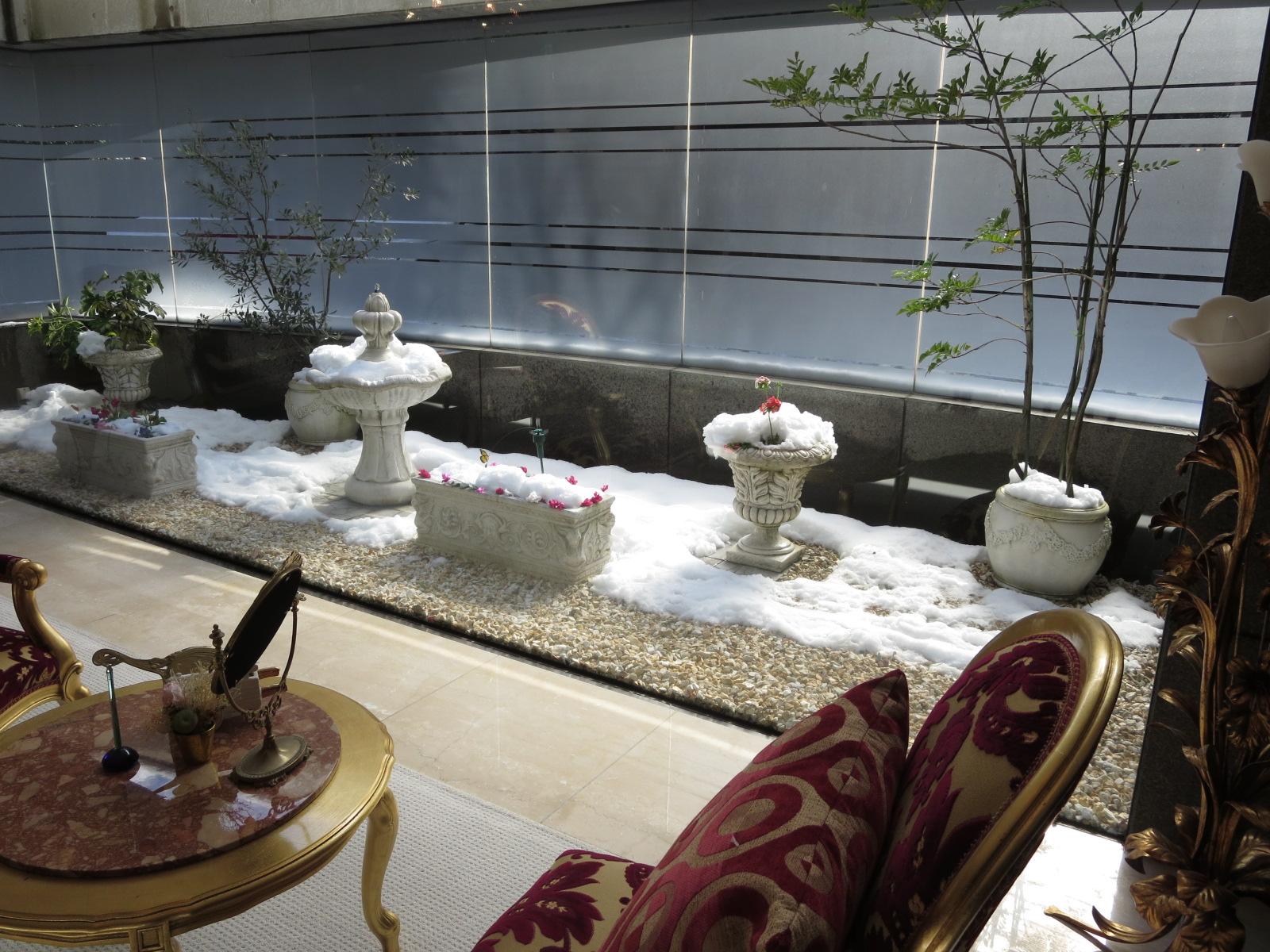 雪クリニック中庭.JPG