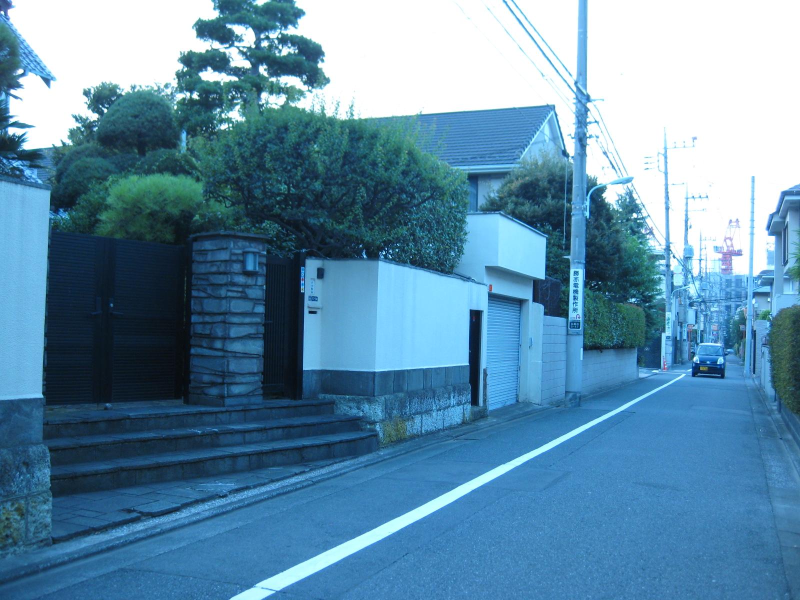 IMG_7006.JPG